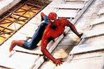 Spider Man: một mình chống lại tội phạm.