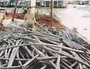 """Cáp viễn thông """"khai thác"""" trái phép bị đồn biên phòng 714 Xẻo Nhàu (Kiên Giang) thu giữ ngày 20-4-2007 - Ảnh: AN NHIÊN"""