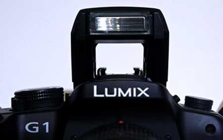 Panasonic G1 là phiên bản Micro Four Thirds thương mại hóa đầu tiên. Ảnh: Digitalcamera.