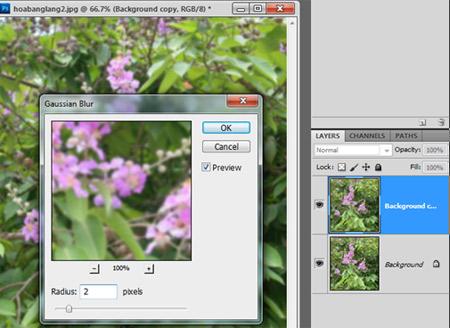 1000503569_photoshop-1.jpg