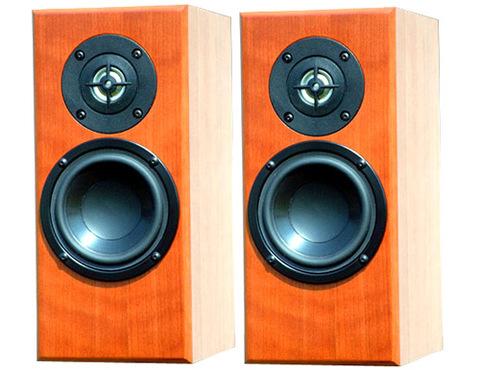 Totem Acoustic Dreamcatcher mang lại âm thanh khá cân bằng ở 3 dải. Ảnh: