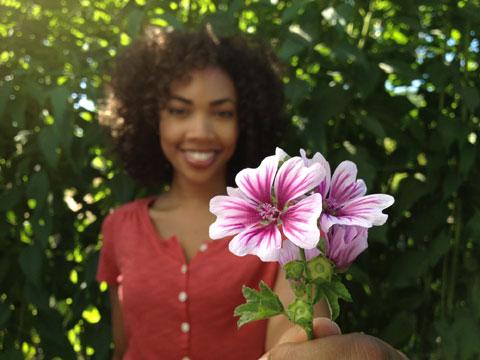 Chụp cận cảnh bông hoa.