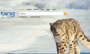 Microsoft đưa công cụ tìm kiếm Bing lên iOS và Android
