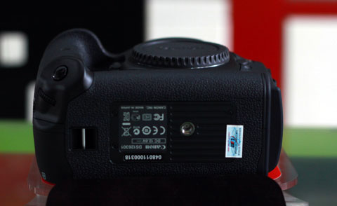 1000040171_canon-1DX-7.jpg