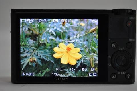 Sony-DSC-RX100-LCD-2-jpg-1344583718-1344