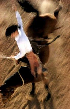 bronco-rider.jpg