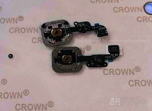 iphone-6-touchid-2-5716-1405649562.jpg