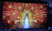 TV OLED 77 inch mỏng 4 mm sắp về Việt Nam