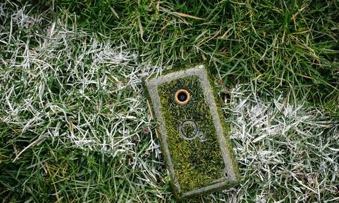 Smartphone làm từ cỏ đầu tiên trên thế giới