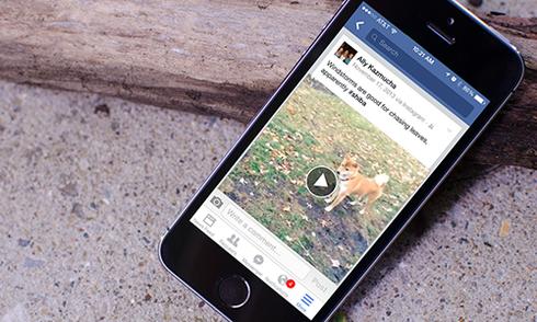 Cách tắt tự động phát video trên Facebook