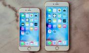 Con trai nên chọn iPhone 6S hay iPhone 6S Plus?