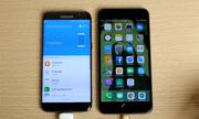 Samsung 'nịnh' người dùng chuyển từ iPhone sang Galaxy S7