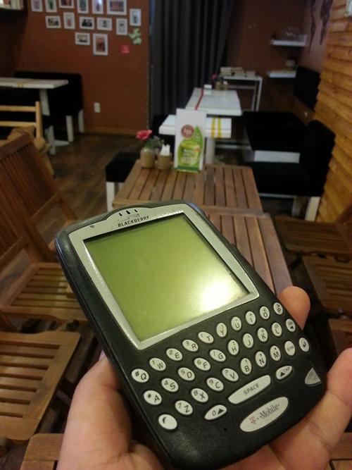nhung-mau-blackberry-co-van-con-duoc-san-lung-1