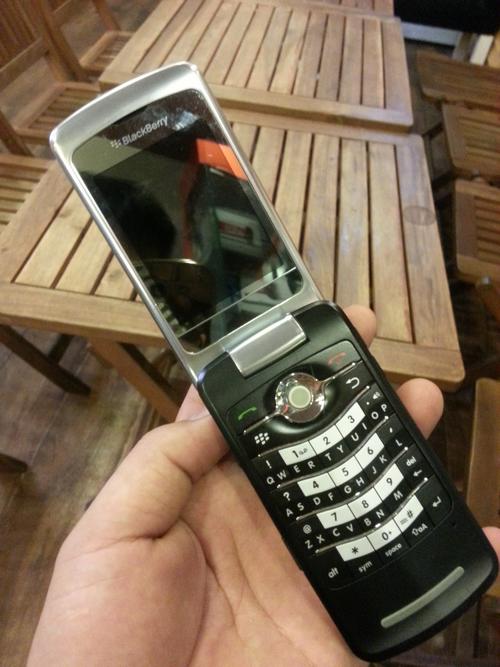 nhung-mau-blackberry-co-van-con-duoc-san-lung-6
