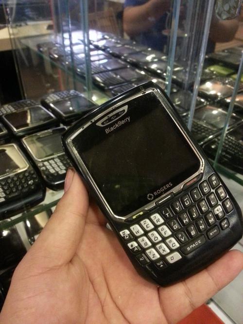 nhung-mau-blackberry-co-van-con-duoc-san-lung-7