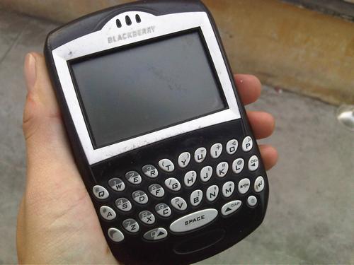nhung-mau-blackberry-co-van-con-duoc-san-lung-2