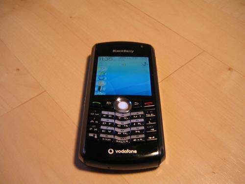 nhung-mau-blackberry-co-van-con-duoc-san-lung-3