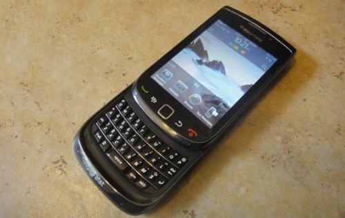 nhung-mau-blackberry-co-van-con-duoc-san-lung-9