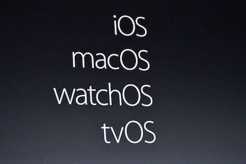 Apple-14-JPG-9330-1465839657.jpg