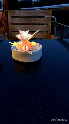10-tinh-huong-hai-huoc-khi-di-bat-pokemon-7
