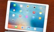iPad mới sẽ bỏ nút Home, tăng kích thước màn hình