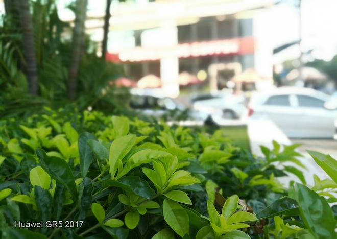 Huawei GR5 2017 đọ khả năng xóa phông với iPhone 7 Plus