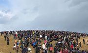 Gần trăm nghìn người Nhật cùng ra hoang mạc bắt Pokemon - 212424
