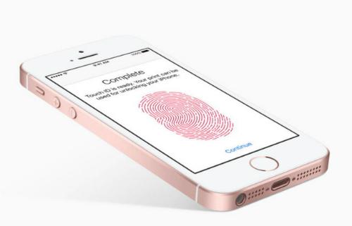 iPhone SE 2 sẽ có màn hình lớn hơn bản cũ