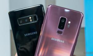 Samsung có thể hợp nhất dòng Galaxy S và Galaxy Note
