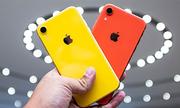 iPhone XR sẽ bán chạy gấp rưỡi iPhone 8
